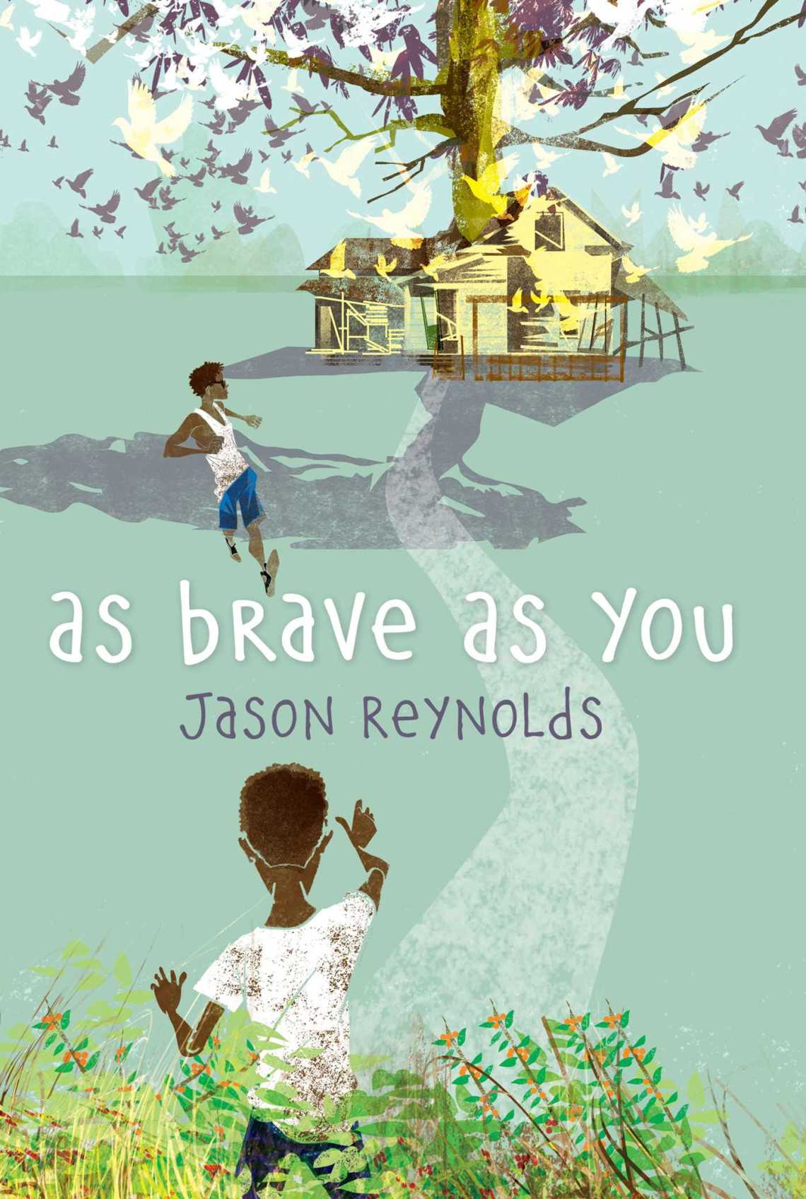 as-brave-as-you-9781481415903_hr